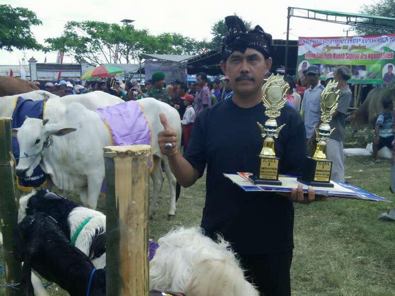 Polisi yang Sukses dengan Ternak Kambing