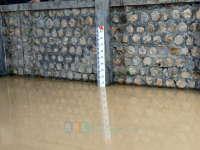 Update Banjir Bengawan Solo, Bojonegoro Kota Masih Siaga Merah