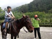 Serunya Menunggang Kuda di Grojogan Sewu