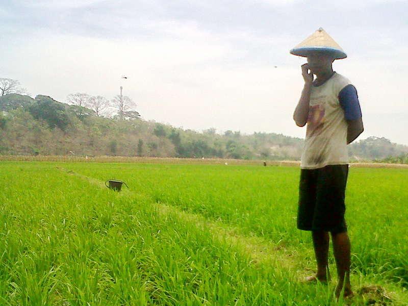 Mengelola Virus Khayalan Thoyyiban Migas di Bojonegoro
