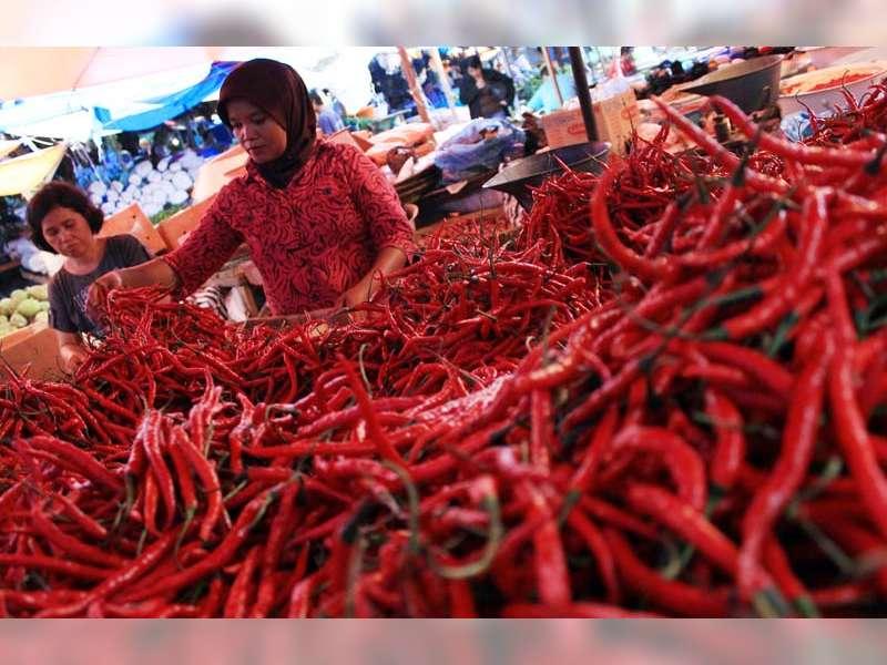 Kadin Perdagangan dan Pasar: Mahalnya Harga Cabai Merupakan Masalah Nasional