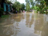 Wilayah Bojonegoro Diprediksi Bakal Terjadi Banjir Lagi