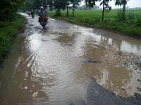 Jalan Penghubung Kecamatan Purwosari-Tambakrejo Rusak Berat