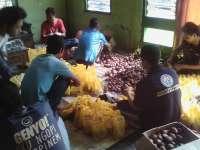 Sore Ini Kartar Desa Wedi Akan Bagikan 5 Ribu Salak Untuk Takjil di Sekitar Alun - Alun