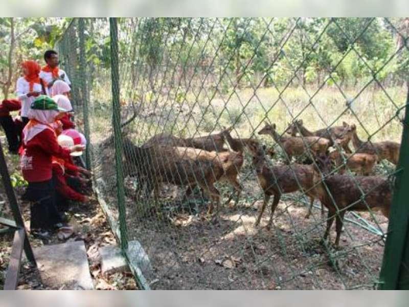 Perhutani Parengan Genjot Desa Malo Jadi Tujuan Wisata Kuliner dan Edukasi