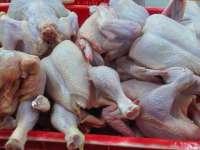 Harga Daging Ayam di Pasar Mulai Naik