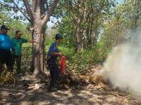 Pemkab Bojonegoro Himbau Kesiapan Hadapi Kebakaran Hutan dan Lahan