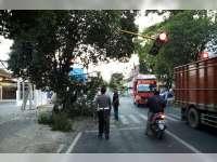 Truk Trailer Tabrak Traffick Light, Pohon Penghijaun, Tiang Telkom dan Lampu PJU
