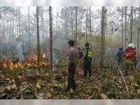Kebakaran Hutan dan Lahan Terjadi di Sejumlah Lokasi di Bojonegoro