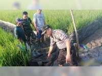 Seorang Warga Kanor Meninggal Dunia Akibat Tersengat Listrik Jebakan Tikus