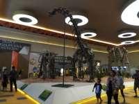 Belajar Sejarah dan Kehidupan Dinosaurus di Dino Park