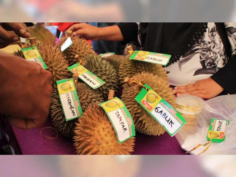 Dinas Pertanian Blora Gelar Festival Durian Lokal