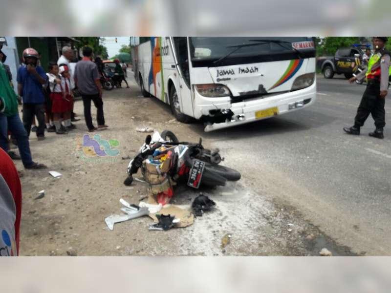 Motor Ditabrak Bus di Tuban Pengendara Motor Tewas di TKP