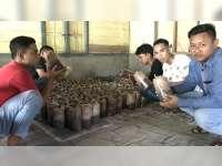 Menilik Usaha Jamur Tiram, Pemuda Desa Begadon Kecamatan Gayam Bojonegoro