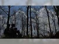 Musim Kemarau Datang, Kawasan Hutan Jati di Blora Rawan Kebakaran
