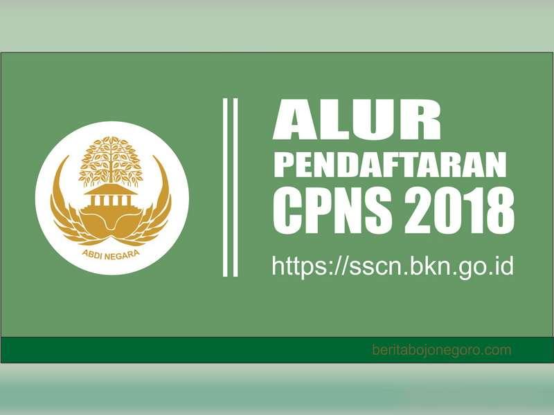 Inilah Alur Pendaftaran CPNS 2018