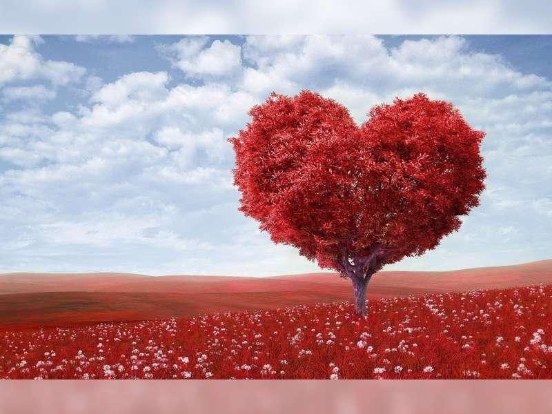 Sangat Cinta