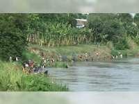 Ratusan Warga di Bantaran Sungai Bengawan Solo Bojonegoro, PanenIkanMabuk