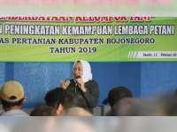 Pemkab Bojonegoro Sosialisasikan Program Pemberdayaan Kelompok Tani