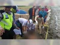 Diduga Penyakit Darah Tinggi Kambuh, Warga Trucuk Bojonegoro Ditemukan Meninggal di Sawah