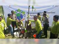 Lestarikan Lingkungan, PT Pertamina EP Cepu Tanam 4 Ribu Pohon Trembesi di Bojonegoro