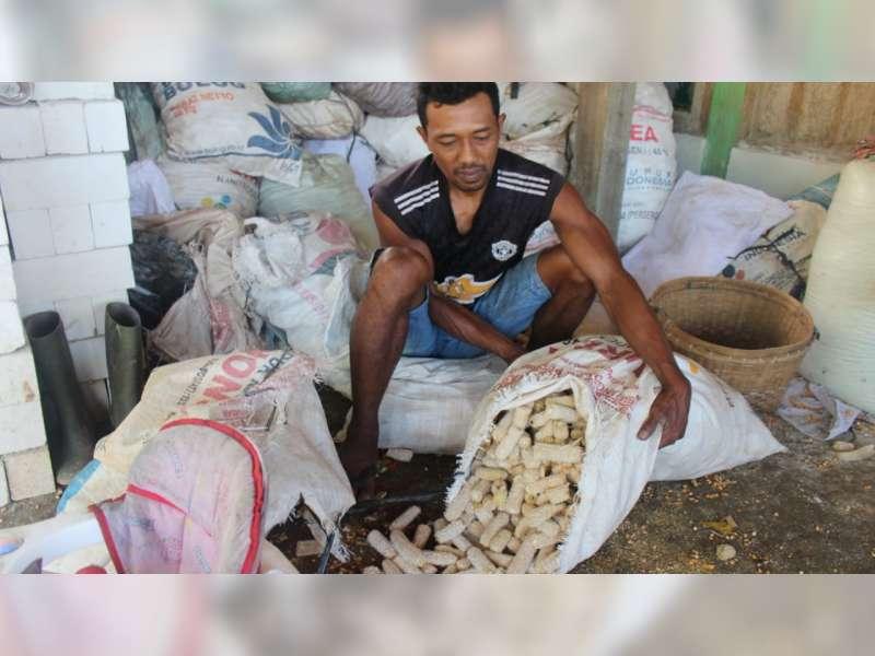 TMMD di Blora, TNI Ajari Warga di Desa Juangjero, Budidaya Jamur Bonggol Jagung