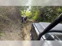 Sejumlah TPS di Bojonegoro Berada di Daerah Terpencil, Dengan Medan Yang Sulit Dijangkau