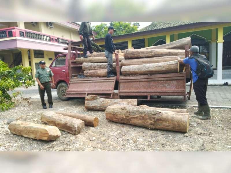 Perhutani Bersama Polres Blora Amankan 45 Batang Kayu Jati, Diduga Hasil Curian