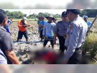 Warga Rengel Tuban Meninggal Dunia saat Cari Jerami di Area Pesawahan Kanor Bojonegoro