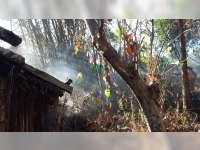 Kebakaran Lahan di Sekar Bojonegoro Nyaris Membakar Kios Sembako Milik Warga