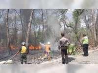 Semak Belukar Hutan Jati di Area Lokasi Wisata Khayangan Api Bojonegoro Terbakar