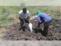 Mayat Mr X Yang Ditemukan di Hutan Kedungadem Bojonegoro, Dimakamkan