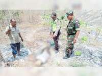 Seorang Karyawan Perhutani KPH Bojonegoro Ditemukan Meninggal Dunia di Hutan