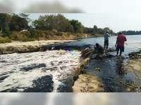 Kondisi Air Sungai Bengawan Solo di Bojonegoro Lebihi Ambang Batas Baku Mutu