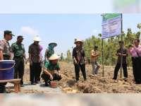 Kemendesa PDTT Bantu Pembangunan Sarpras Agribisnis Ayam Joper Desa Brabowan Blora