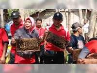 Wilayah Kabupaten Blora Potensial Untuk Budidaya Lebah Madu