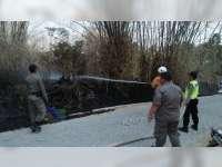 Semak Belukar dan Rumpun Bambu Milik Warga Kedungadem Bojonegoro Terbakar