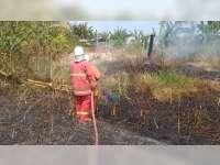 Akibat Pembakaran Sampah, Semak di Ledokkulon Bojonegoro Terbakar